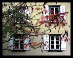 Es schaut der Herbst zum Fenster rein...