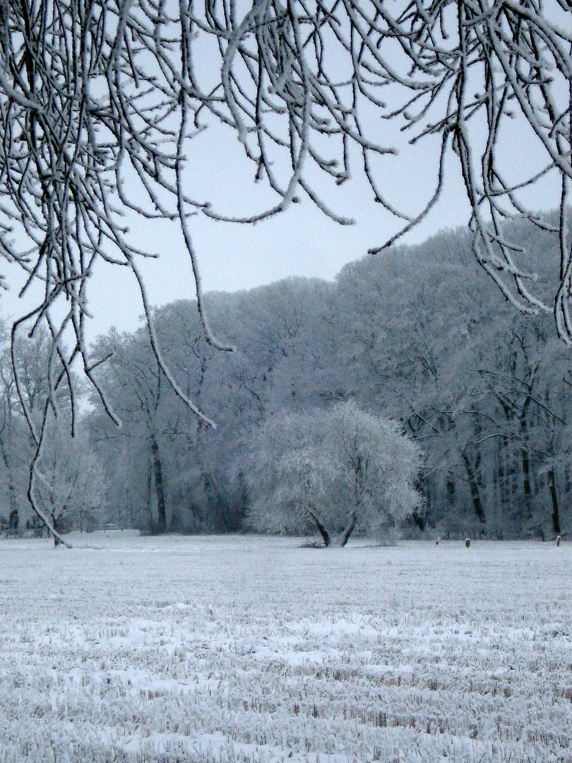 Es schneit immer wieder neu