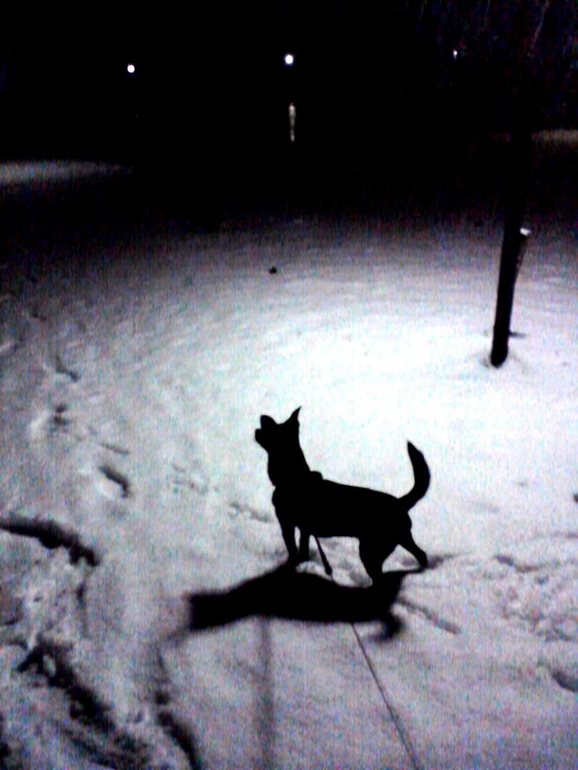 ..es schneit & schneit..