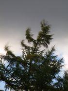 Es stürmt!