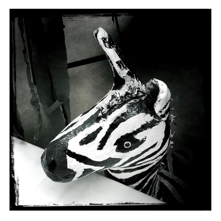 es war einmal ein ängstliches Zebra