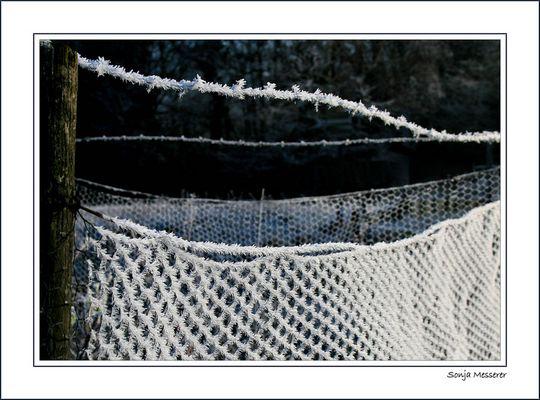 Es war kalt...sehr kalt...