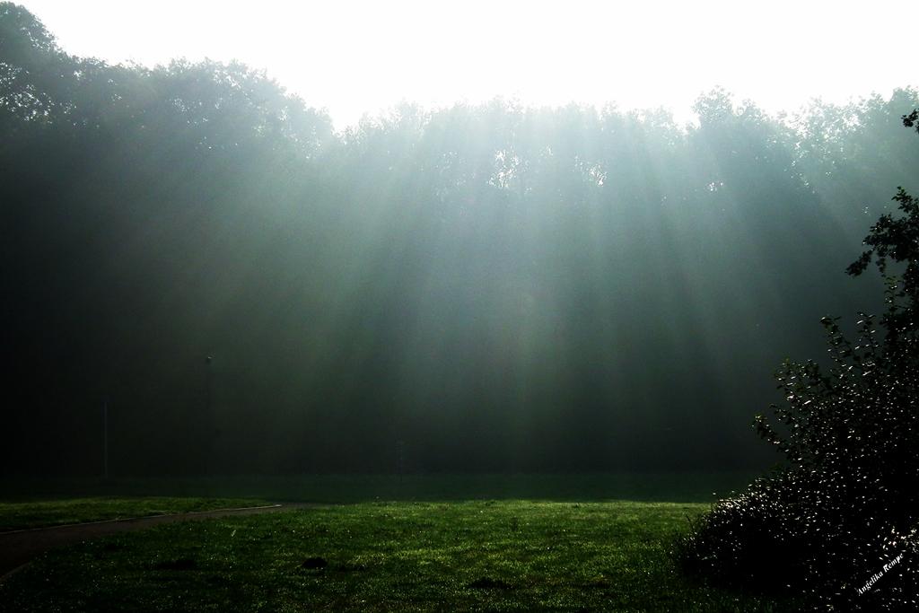 Es werde Licht....!!!
