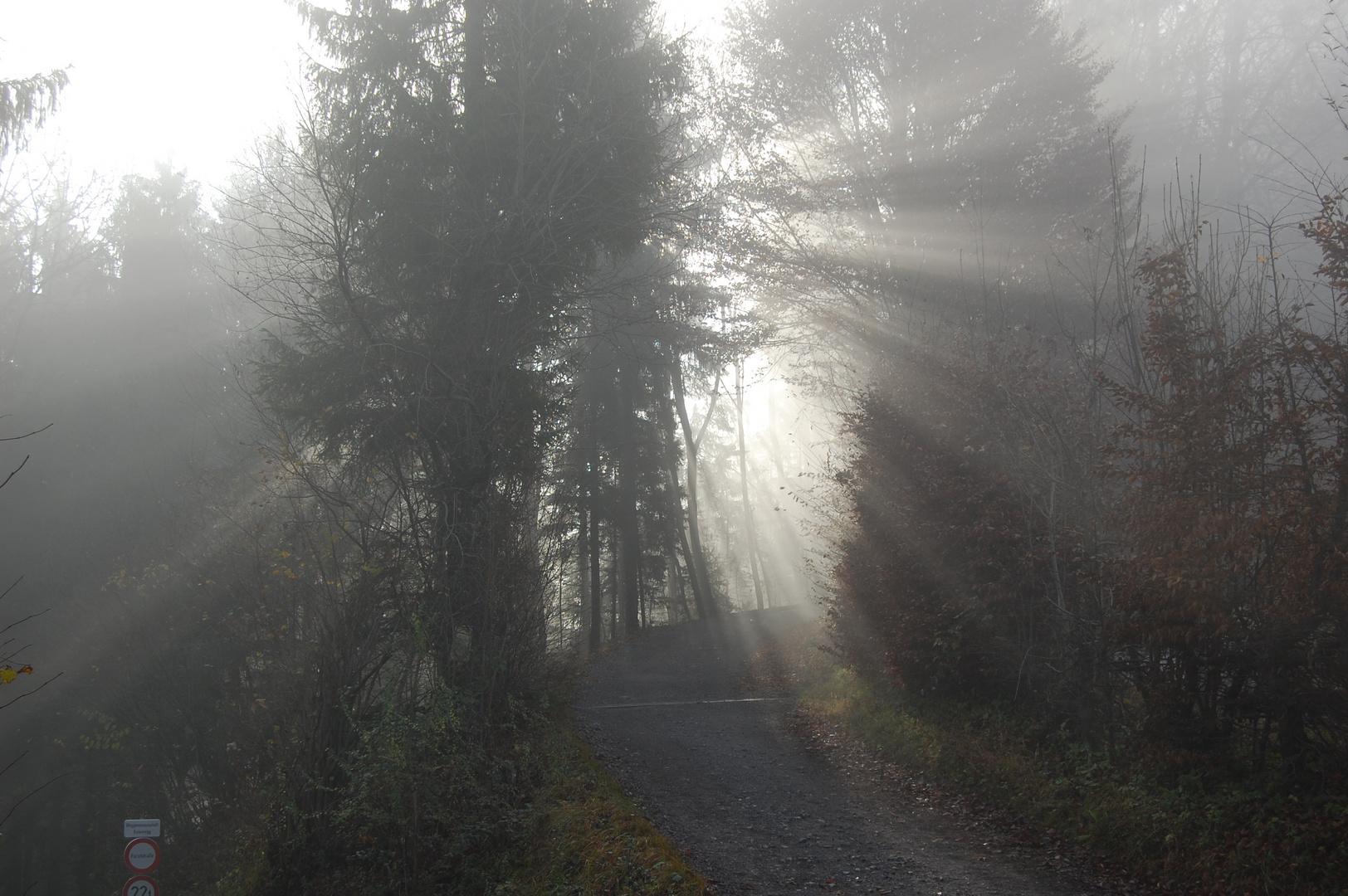 Es werde Licht