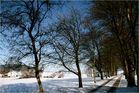 Es wintert noch im Sauerland,