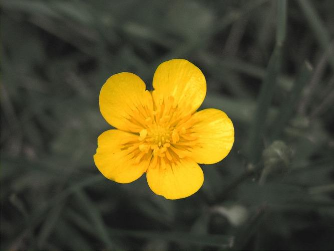 Es wird Frühling!