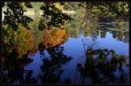 Es wird Herbst am Zürichsee