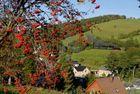 es wird Herbst bei der Fichtelbergbahn