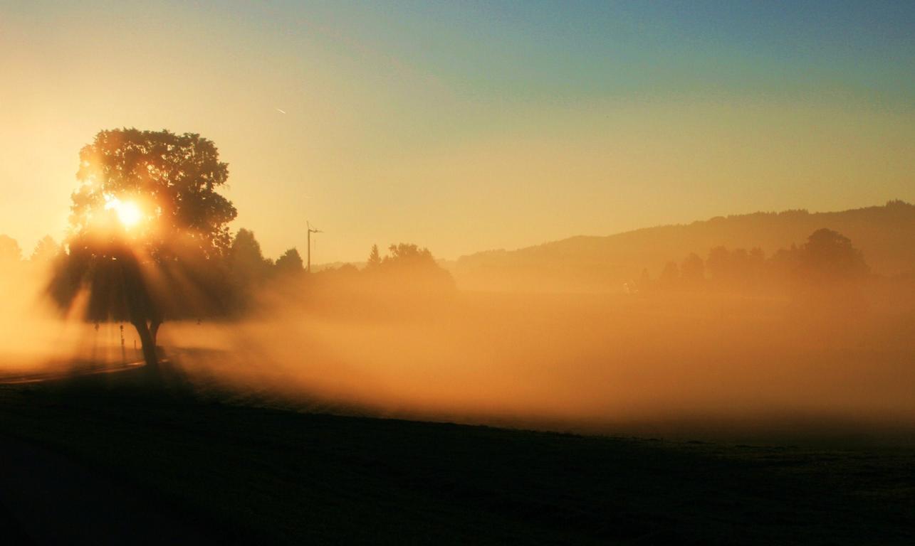 Es wird Herbst - erste Nebel in der Früh