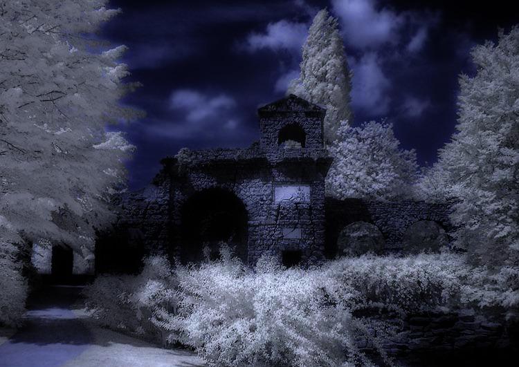 Es wird Nacht in Düsterwald...
