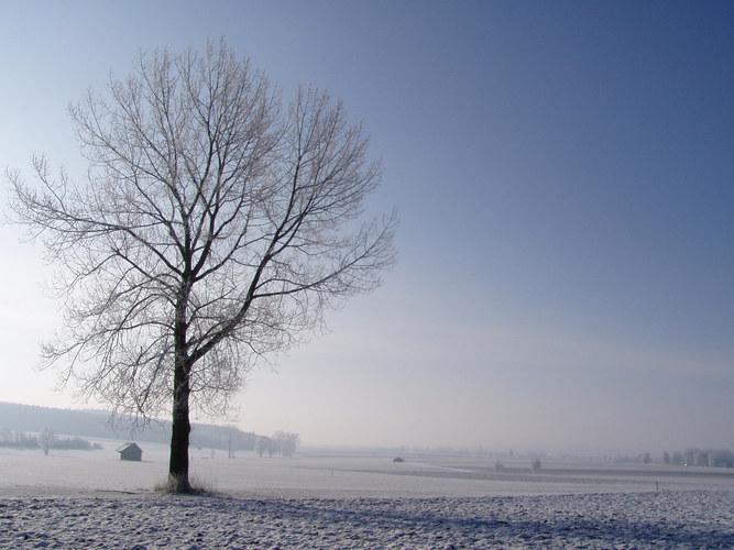 ... es wird wieder Winter