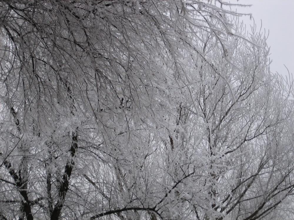 Es wird Winter