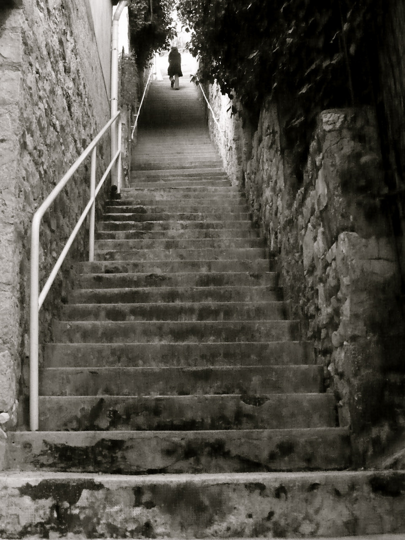 Escaliers du caroubier