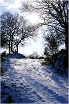 Escapade dans la neige =)