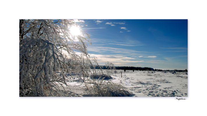 Escapade hivernale