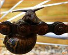escargot équilibriste
