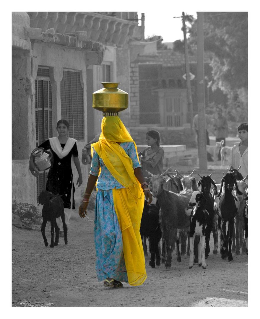 Escena rural en Rajastán