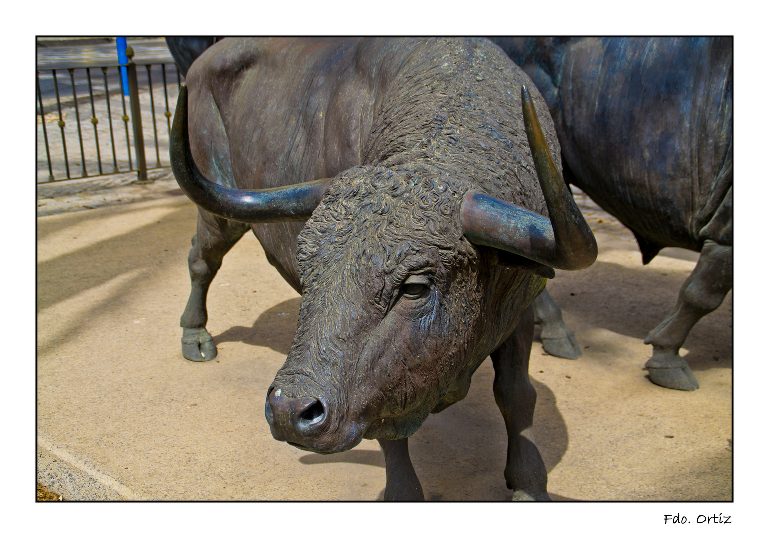 ¡¡Ese Toro!!