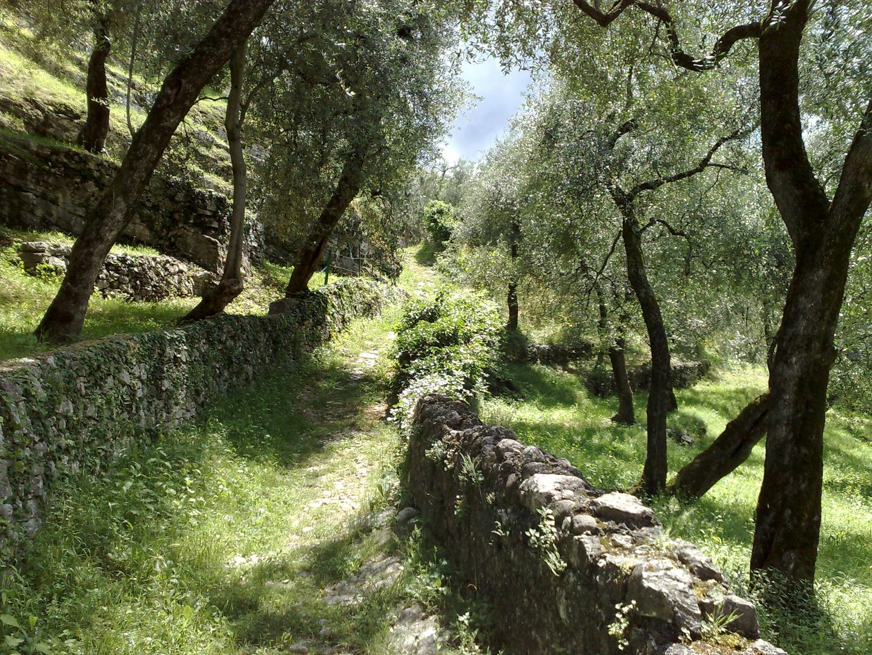 Eselspfad am Gardasee