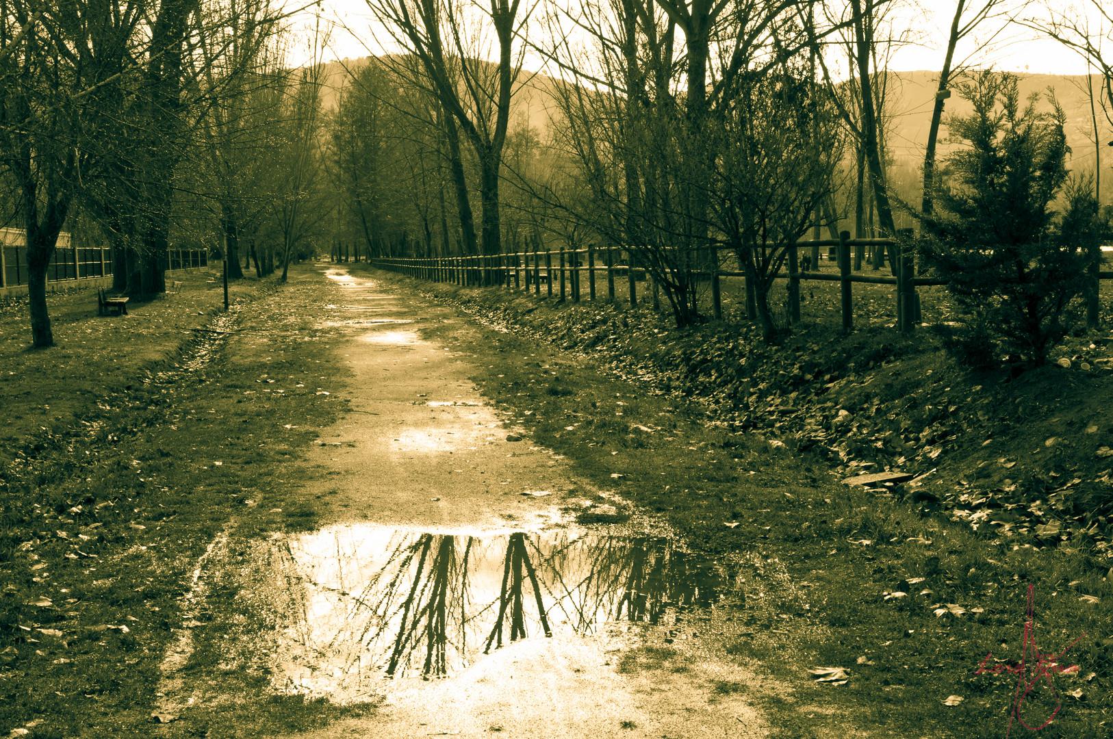 Espejo en el camino