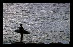 ESPRIT du surf?