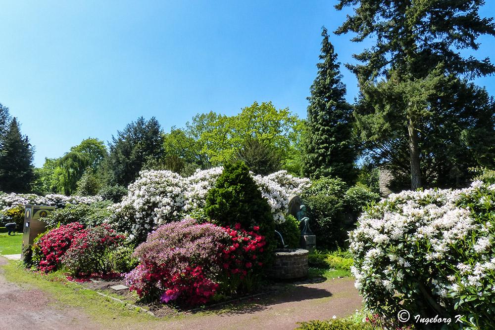 Essen-Bredeney - Städt Friedhof im Frühling 2