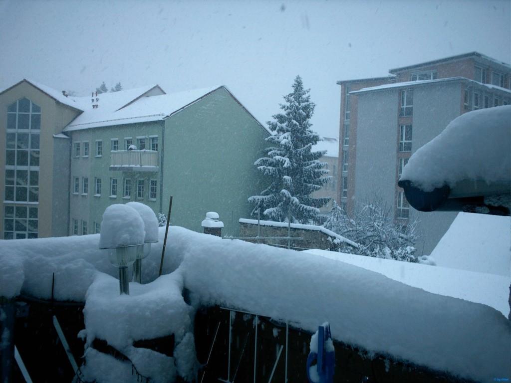 Essen - Koopmanns Hude im Winter 2012/13 von Markus Faroß!