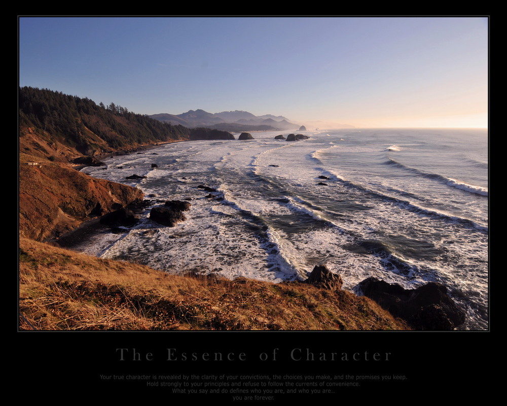 essence of character