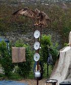 Estandarte Aguila imperial romana, en el campamento.