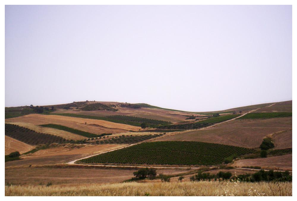 estate siciliana