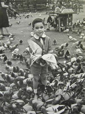 Este polluelo soy yo !  (año 1954)