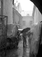 estland-regen