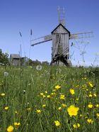 Estnische Windmühlen