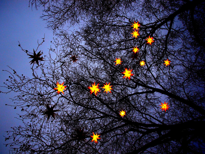 - estrellas -