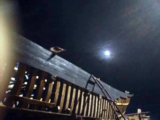 Et ma quille, enfin, sous la Lune du Maroc.