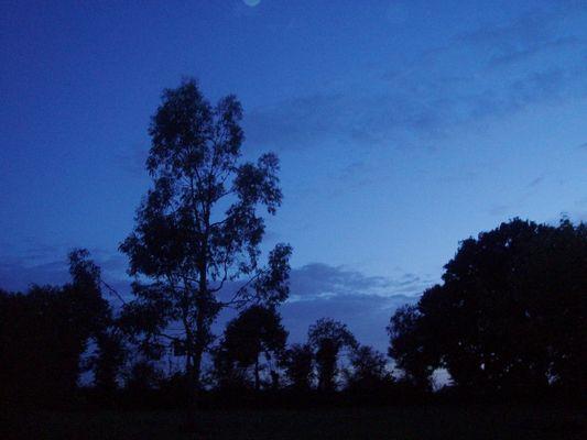 Et par une nuit bleue ...