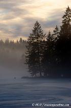 Etang de Gruère dans la brume