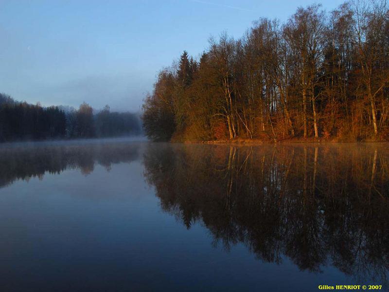 étang de l'abbaye en hiver