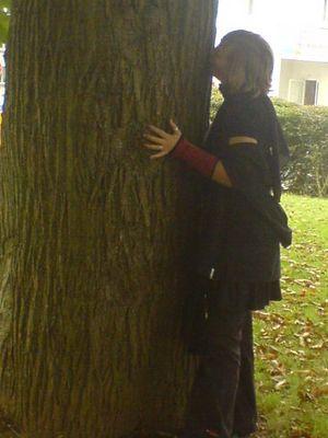 etre une fille c'est faire un bisous à un arbre sans se soucier qu'on est dans la cour du lycée