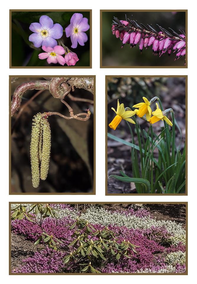 etwas Frühling