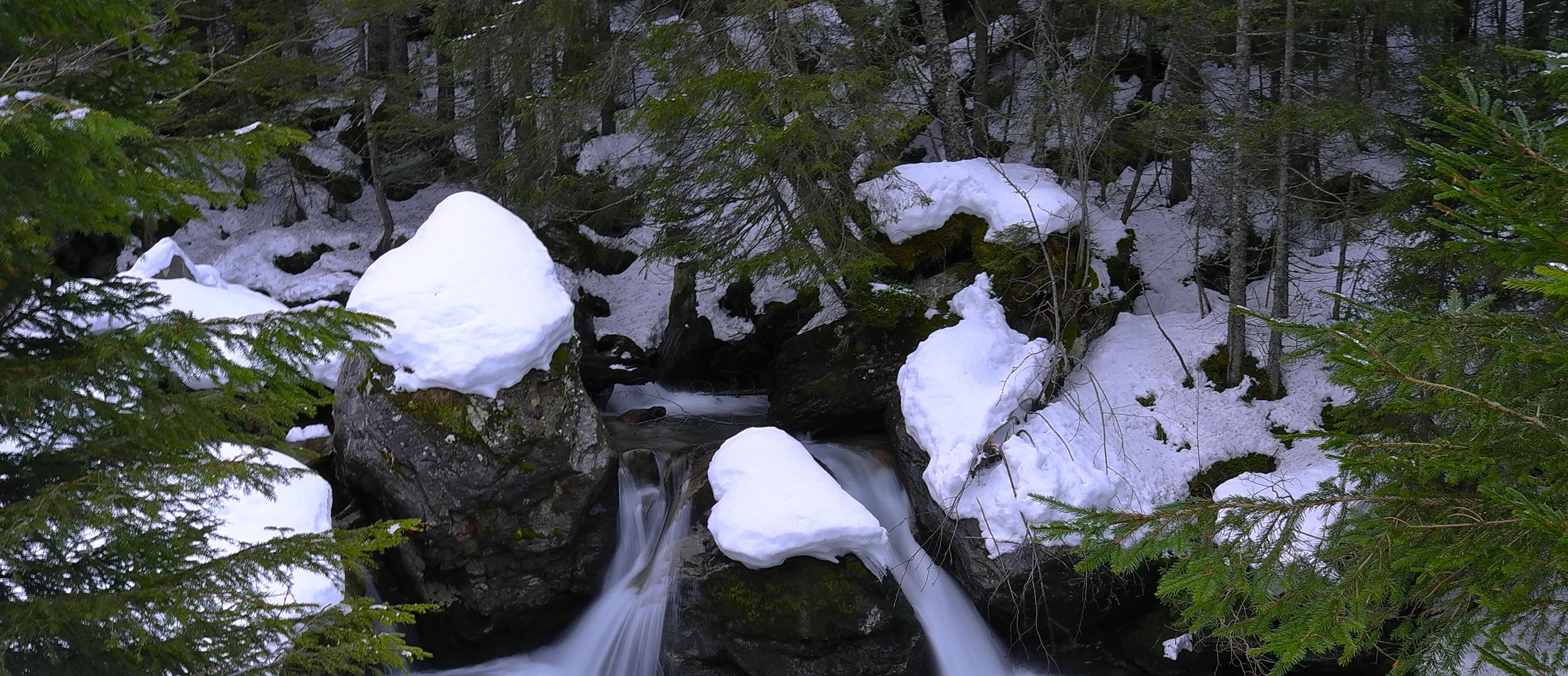 Etzlibach, Bristen