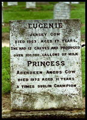 Eugenie and Princess
