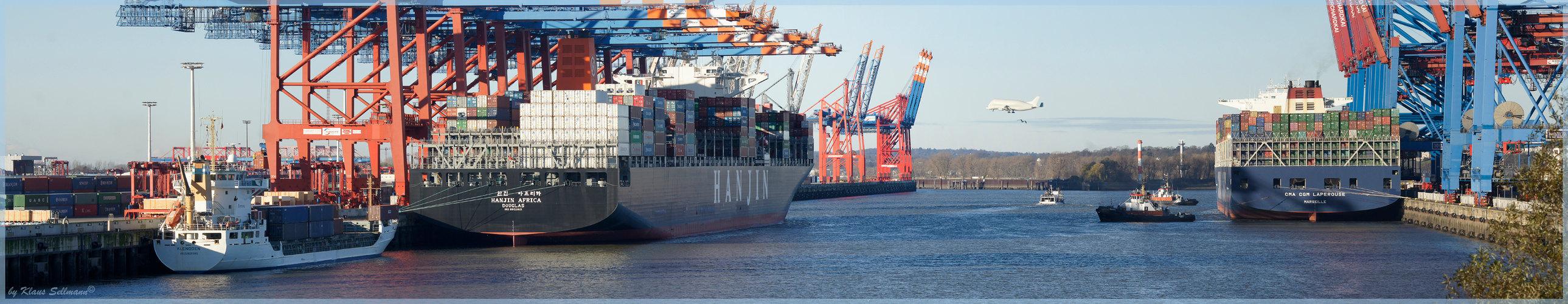 Eurogate mit Beluga