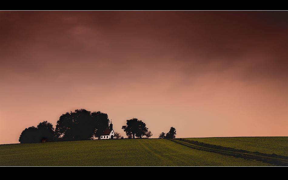 - evening light -