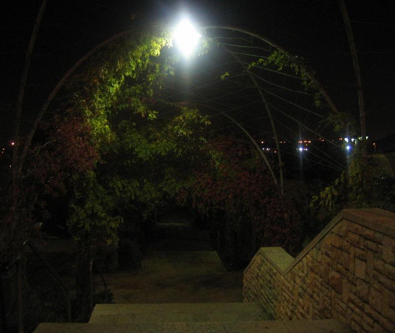 Evening Pathway