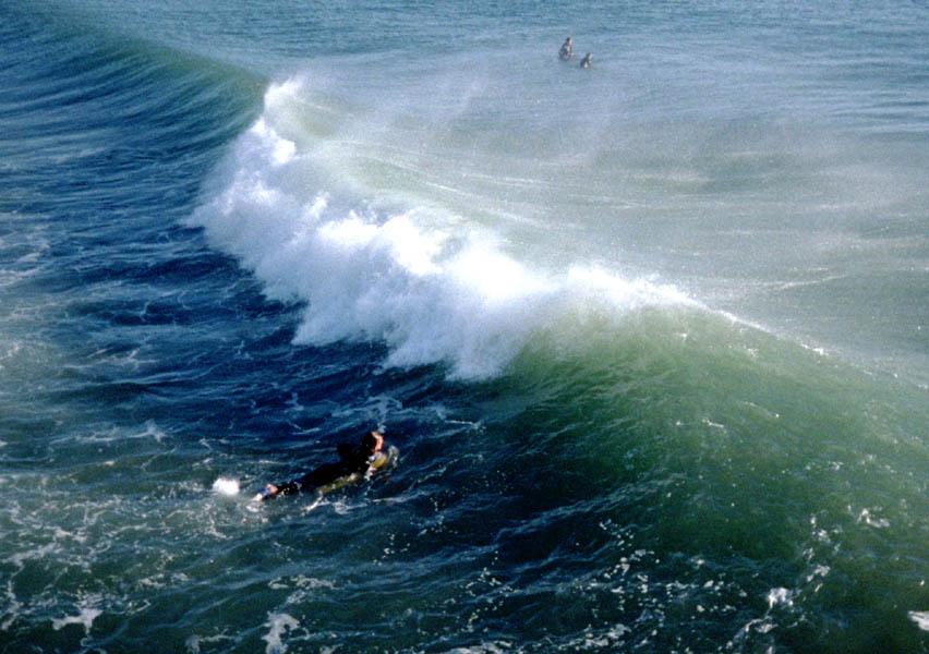 Evervbody's surfin' ...