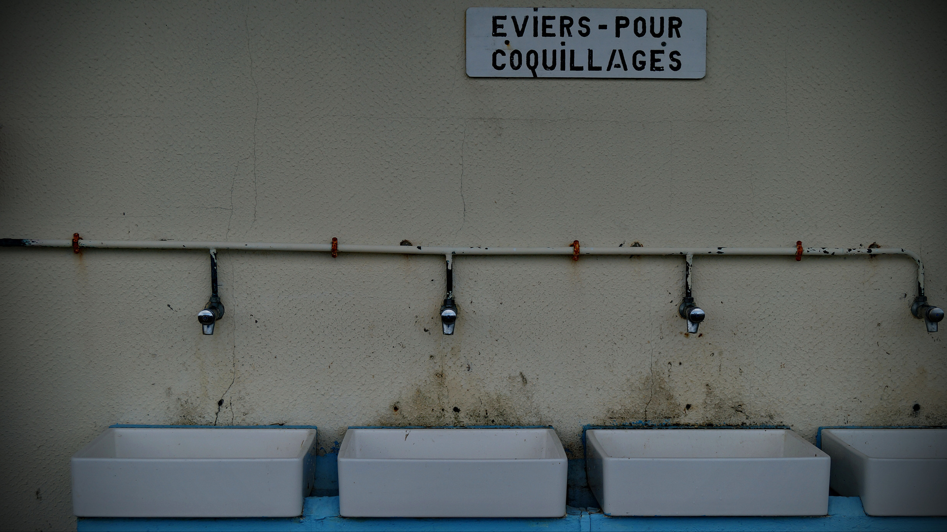 Eviers pour coquillages