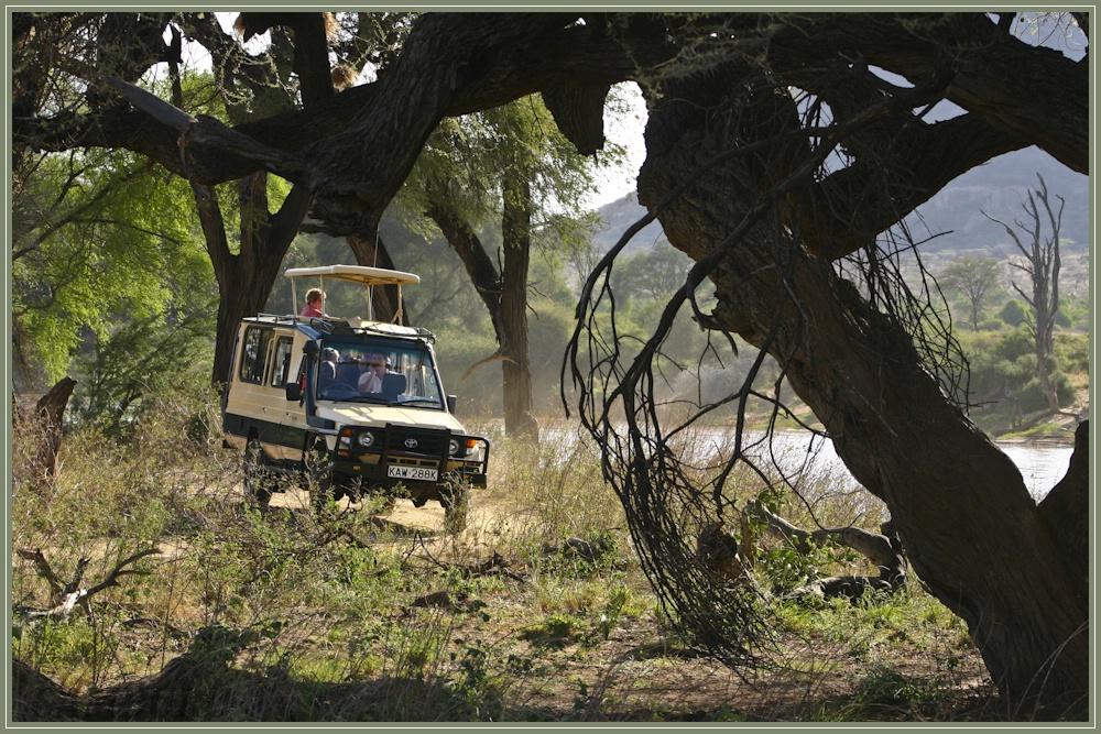 Ewaso Nigiro Fluß (Samburu National Reserve)