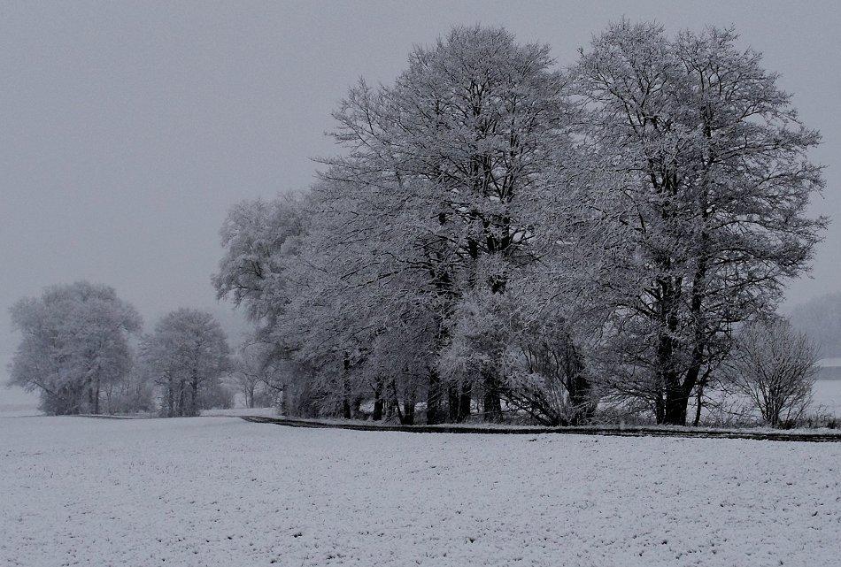 Ewig Winter ..
