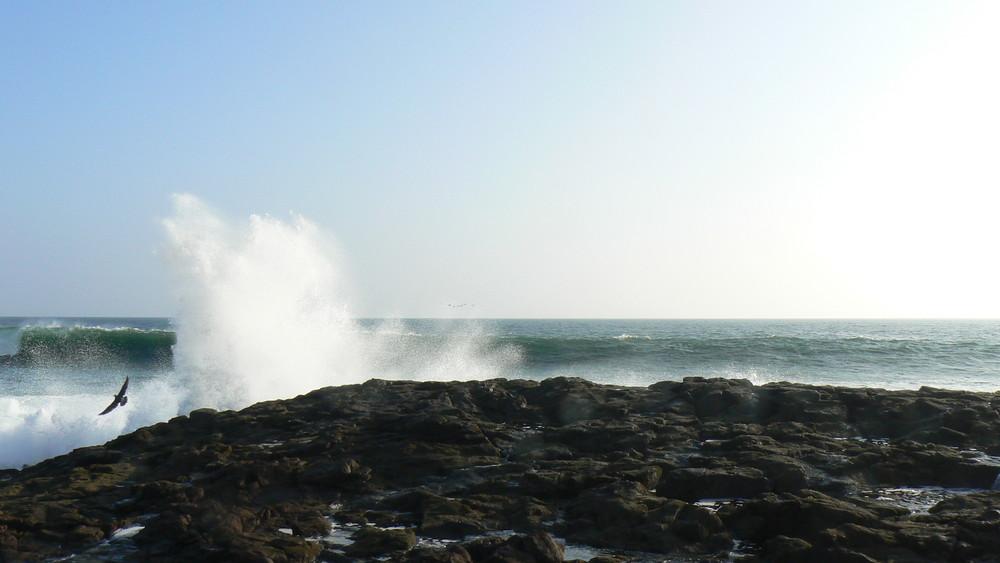 Ex île de l'Alacran, pleine vue sur le Pacifique Est